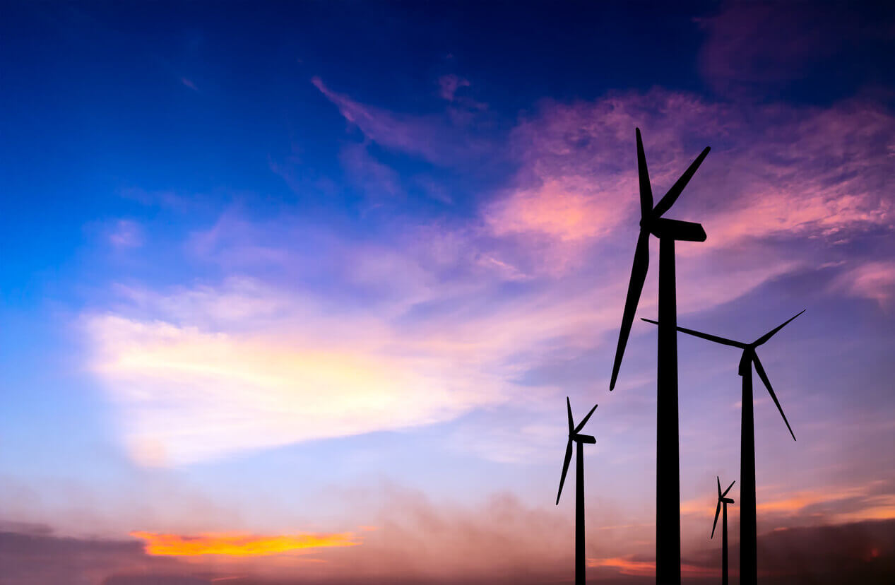 Our World is Net-Zero: From Microgeneration to Powering the Nation