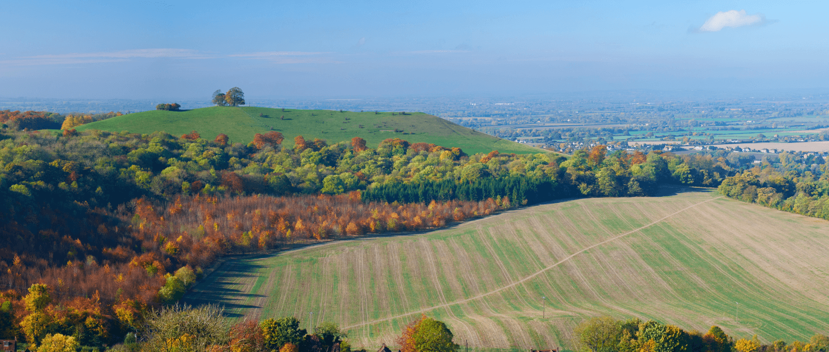 A middle class revolt in the Chilterns