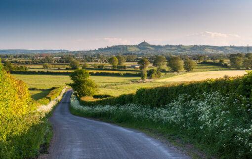 One Summer in Somerset