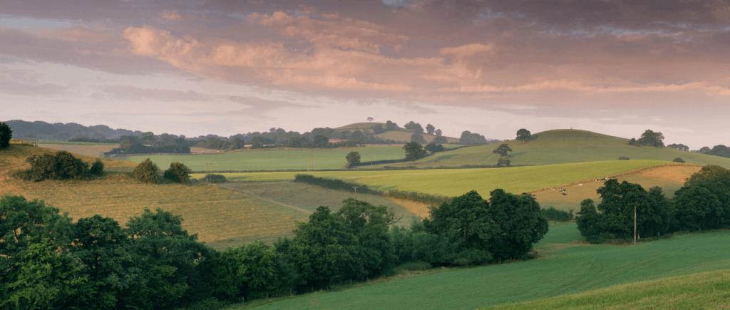 One Summer in Somerset 1
