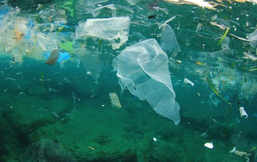 We need to talk about waste!